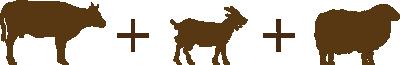 icon-vaca-cabra-oveja